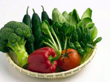 Những thực phẩm dành cho trẻ khi tập nhai